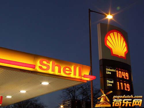shell_9_1.jpg